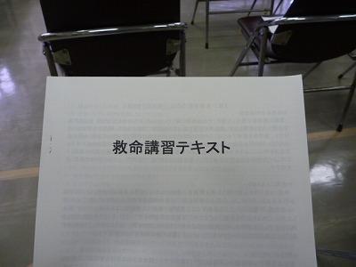 P1020370.jpg