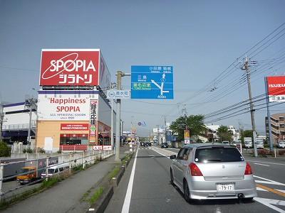 P1050016.jpg