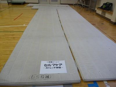 P1060917.jpg