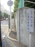 PICT0680.JPG